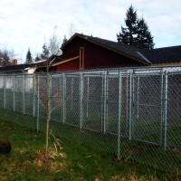 kennels4